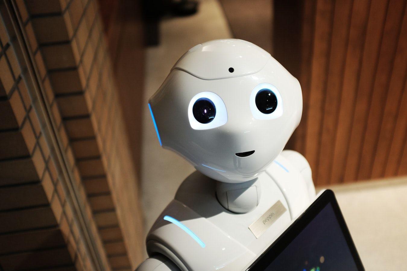 Cos'è un bot e come può aiutare lo sviluppo del tuo sito aziendale?